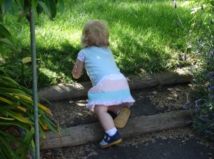 Cute cute cute! Discovering the innocent joys of crawling up and down stairs, green grass